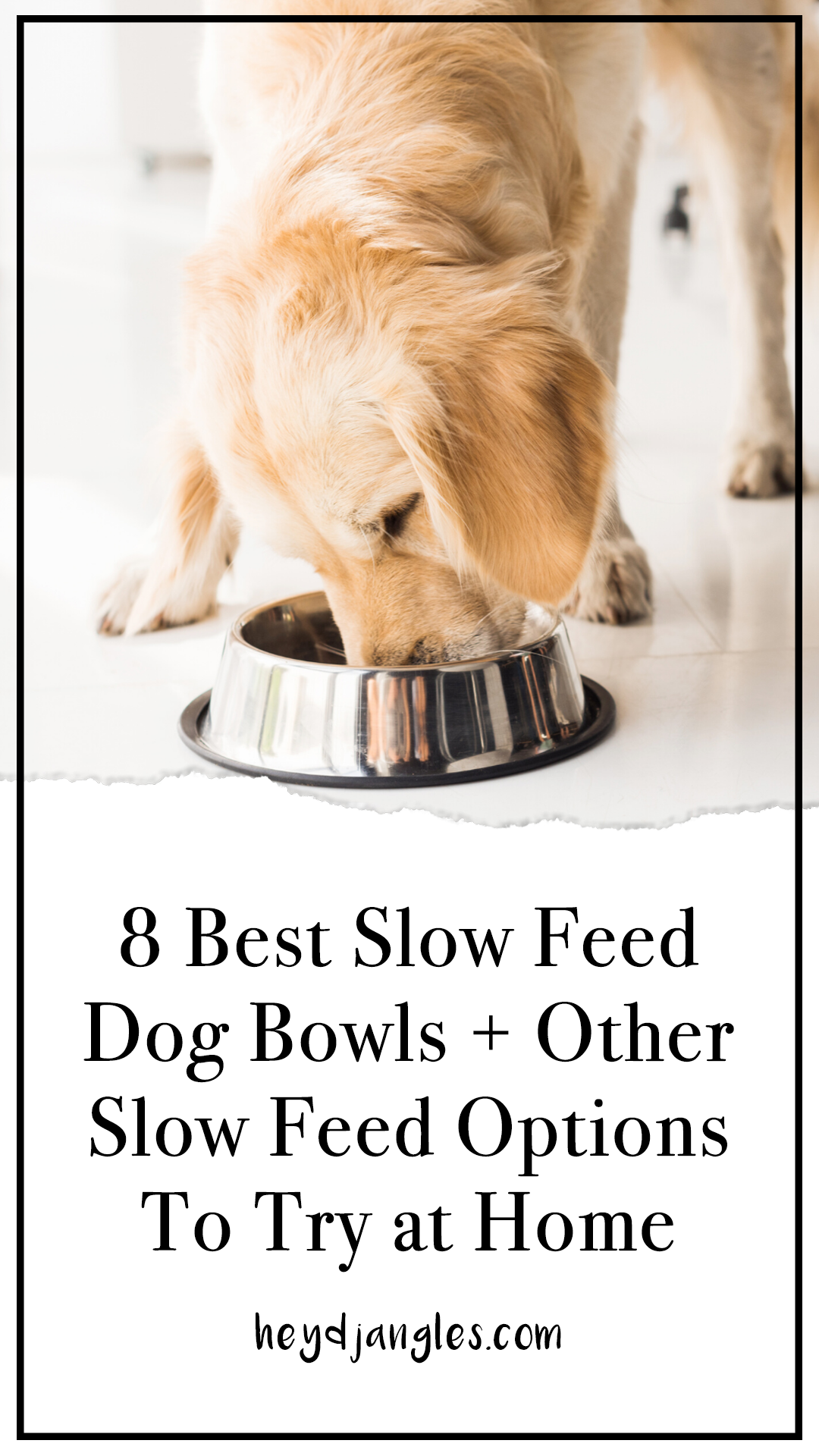 8 Best Dog Food Bowls for Fast Eaters and Other Slow-Feed Options to Try – heydjangles.com, slow feeder dog bowls, interactive dog toys, treat dispensing dog toys #doglover #slowfeeder