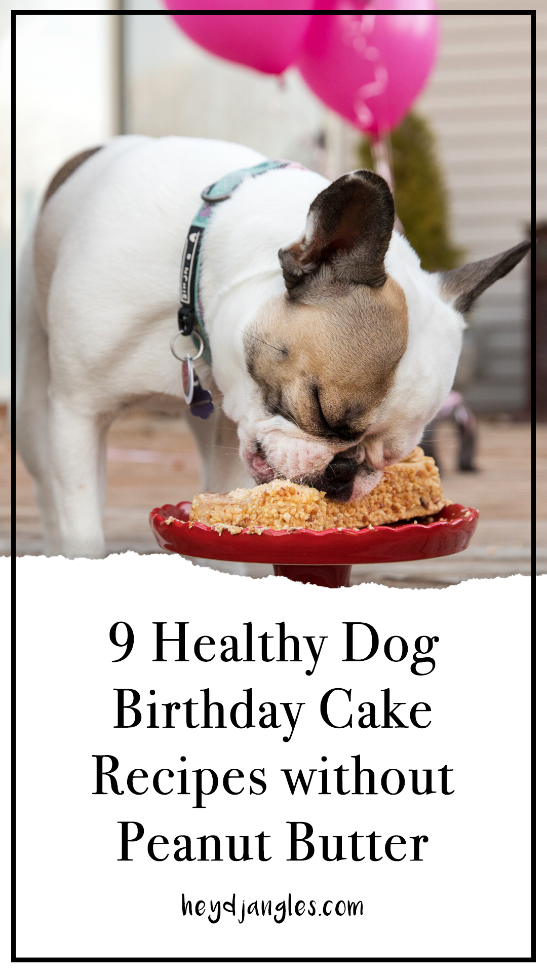 9 Dog Birthday Cake Recipes Without Peanut Butter - heydjangles.com - pup cake recipes, dog treats for sensitive stomachs, dog peanut allergy, dog cake recipes #doglover #dogcake #dogparty