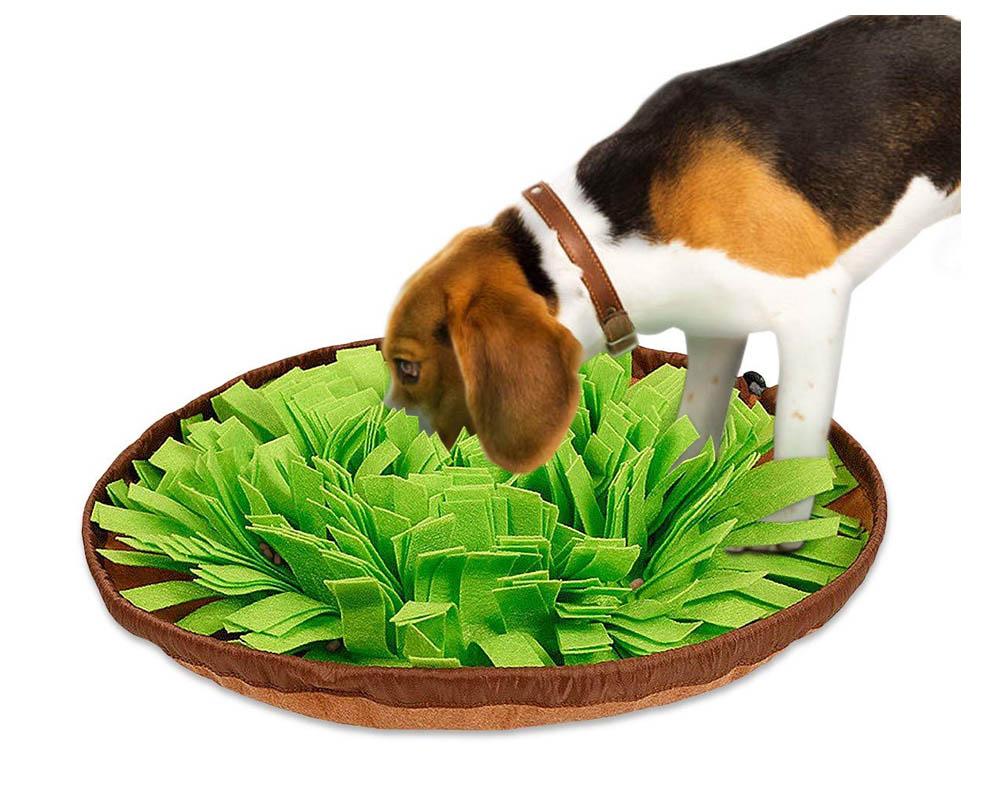 Petrip Snuffle bowl, Beagle dog