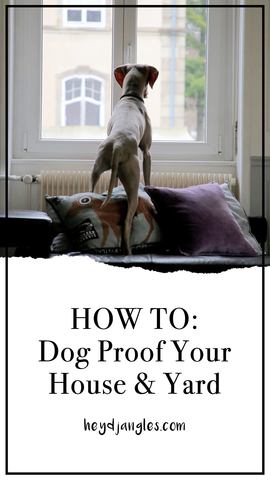 Dog Proofing Your House – A Handy 'How-to' Guide – Hey, Djangles. Puppy proofing checklist, how to dog proof your home. #doglover #puppyproofing