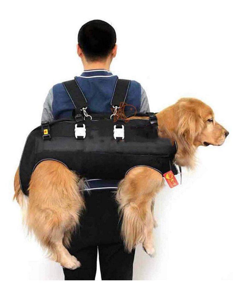 Big Dog Carrier Sling Backpack