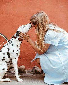 Ultimate Dog Parent Gift Guide – Gifts for 8 Types of Dog Parent! heydjangles.com - Gift ideas for dog parents #dogparentgifts #dogmomgifts #dogdadgifts