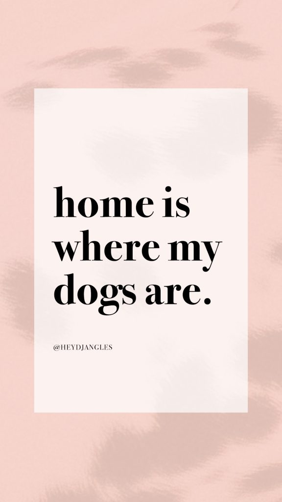 Dog quote - Home is where my dogs are. #dogquotes #doglover