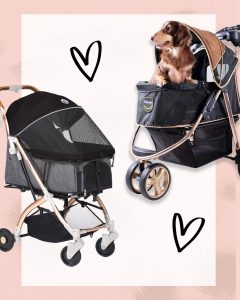 6 Luxury Dog Strollers for Stylish Pooches - heydjangles.com - best pet strollers, Ibiyaya, Gen7Pets, HPZ, TOGfit, luxury dog accessories.