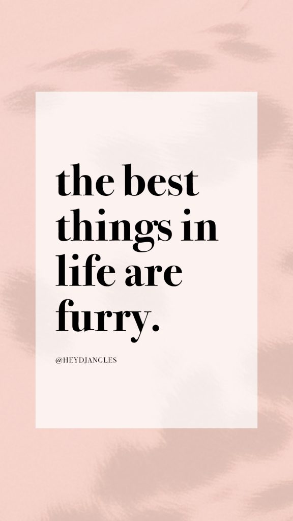 Dog quote - The best things in life are furry. #dogmom #dogquote