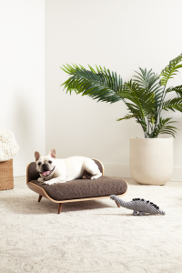 ROUND-UP: Mid-Century Modern Dog Beds, Dog Crates & Pet Bowls - feat. Pixi Dog Bed from Cairu MCM