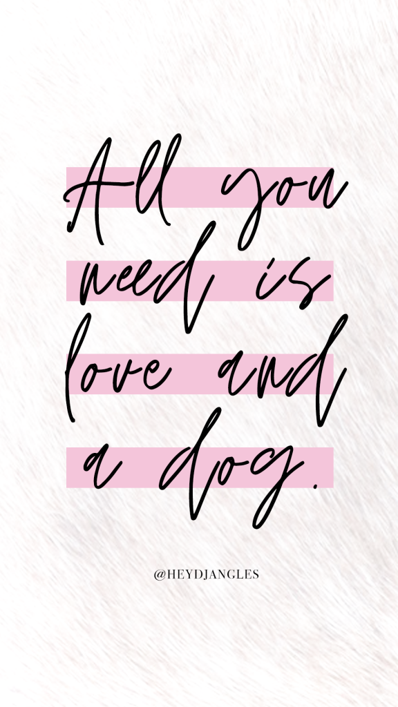 Dog quote - All you need is love and a dog.