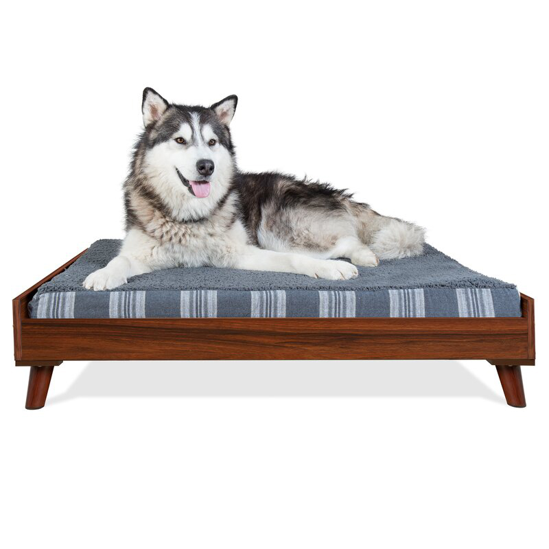 MidCentury Modern Dog Beds