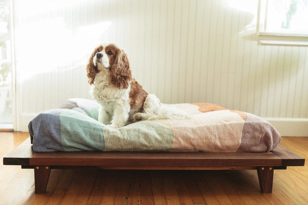 ROUND-UP: Mid-Century Modern Dog Beds, Dog Crates & Pet Bowls - Platform Dog Bed from The New Craftsman
