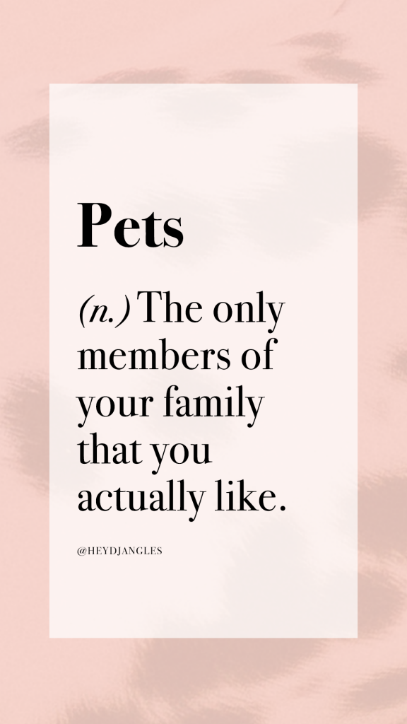 Pets definition - The only members of your family that you actually like.