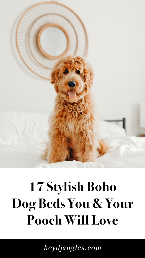 17 Stylish Boho Dog Beds You and Your Fur Kids Will Love