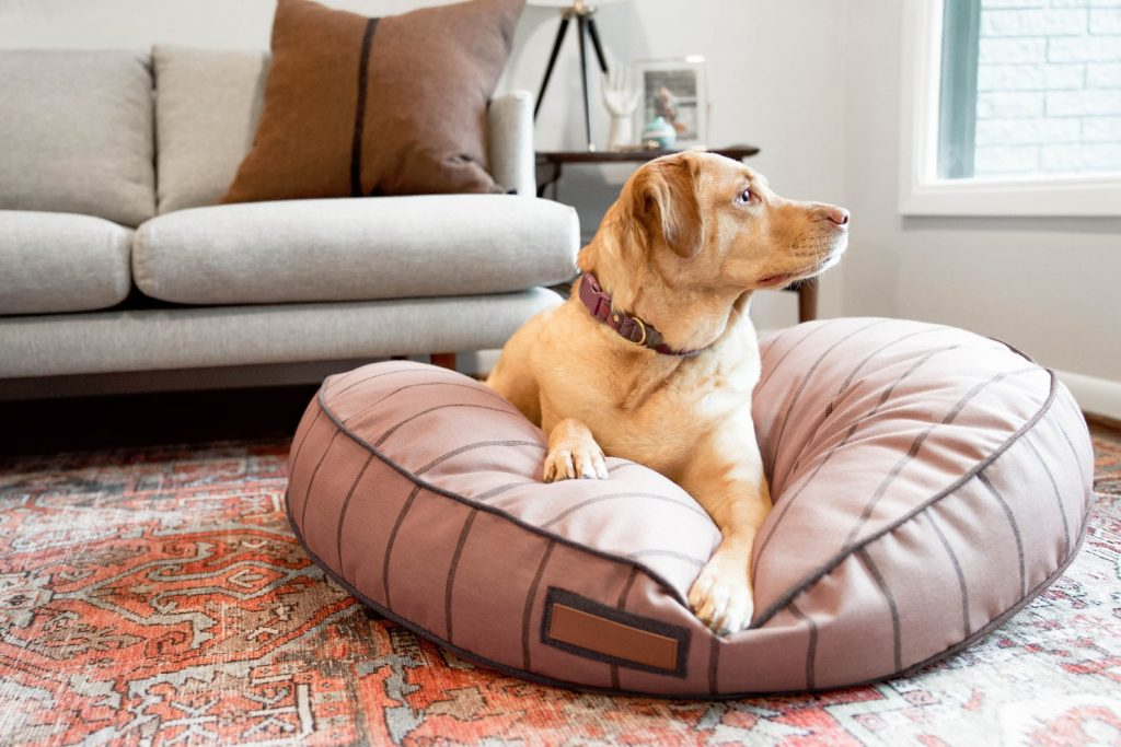 Picture of: 20 Stylish Boho Dog Beds You And Your Fur Kids Will Love Hey Djangles