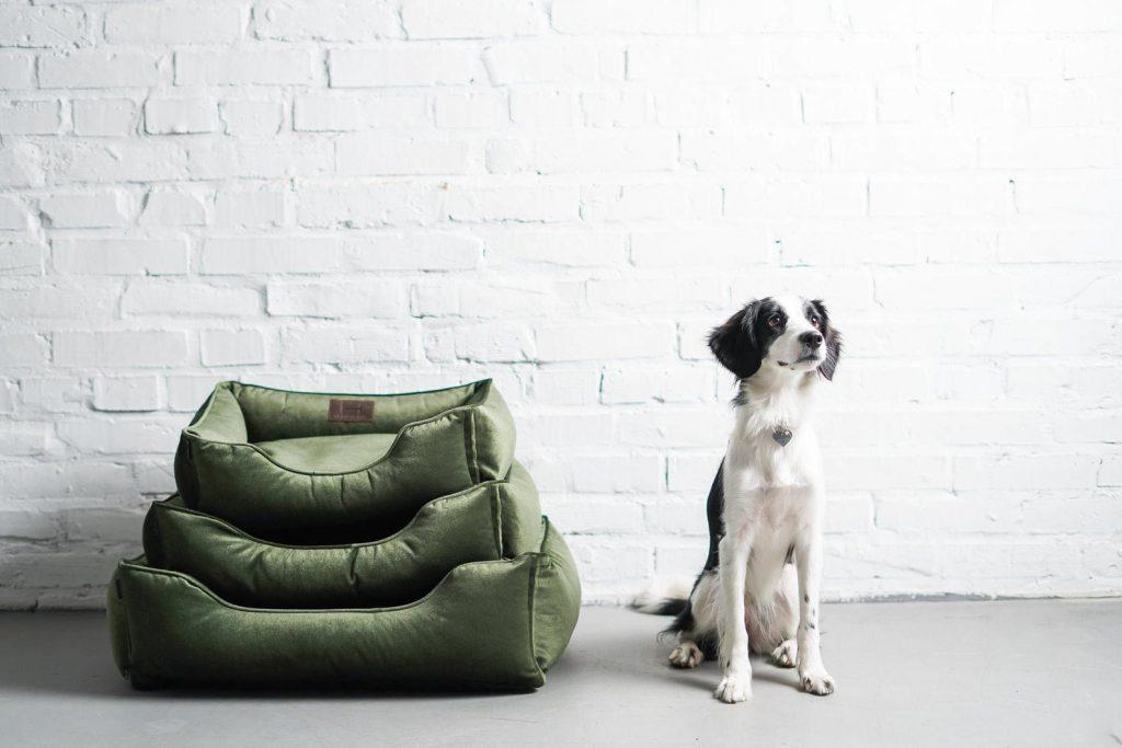Emerald Green Velvet Dog Bed.