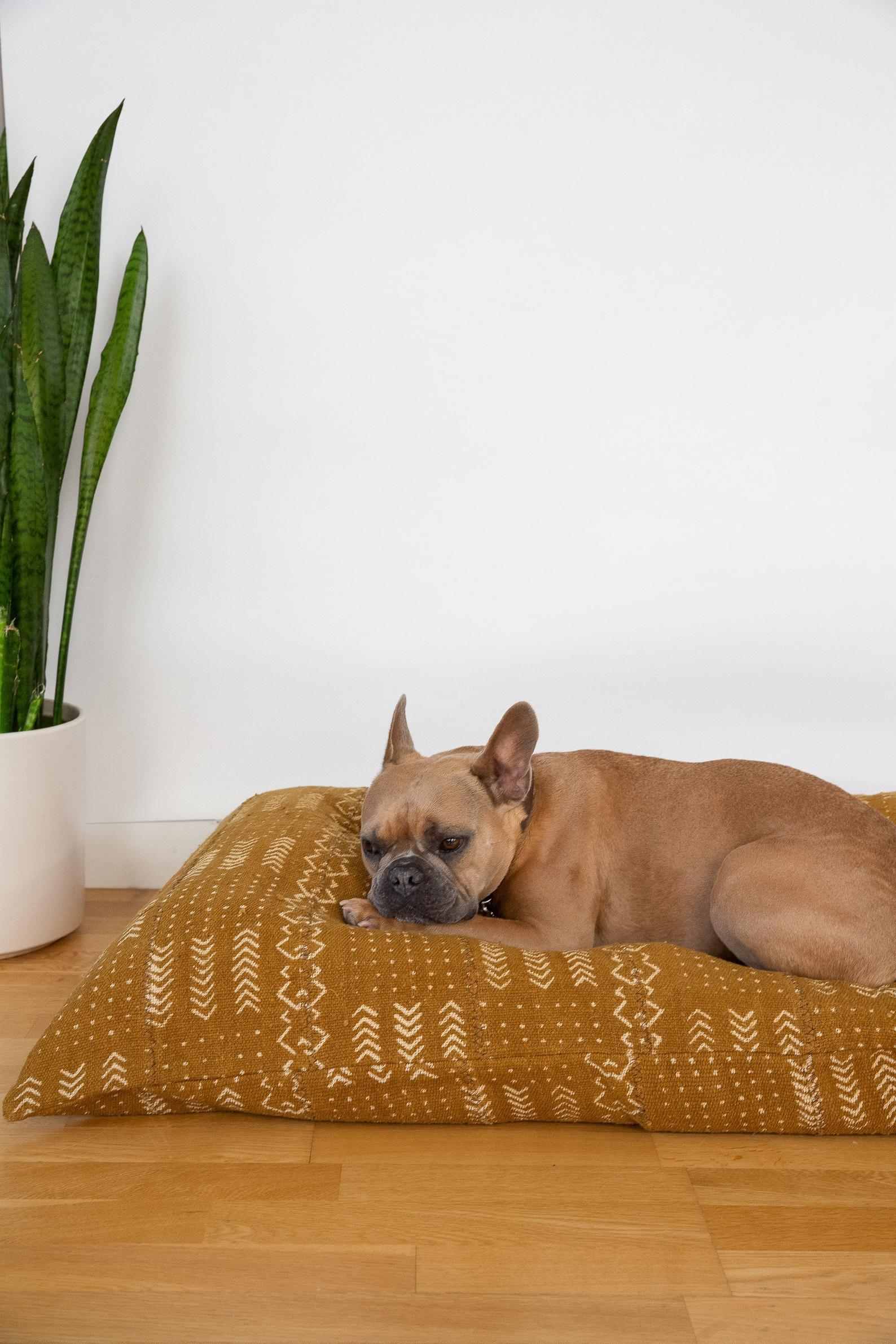 17 Stylish Boho Dog Beds You & Your Fur Kids Will Love - Mudcloth Dog bed cushion, French Bulldog.