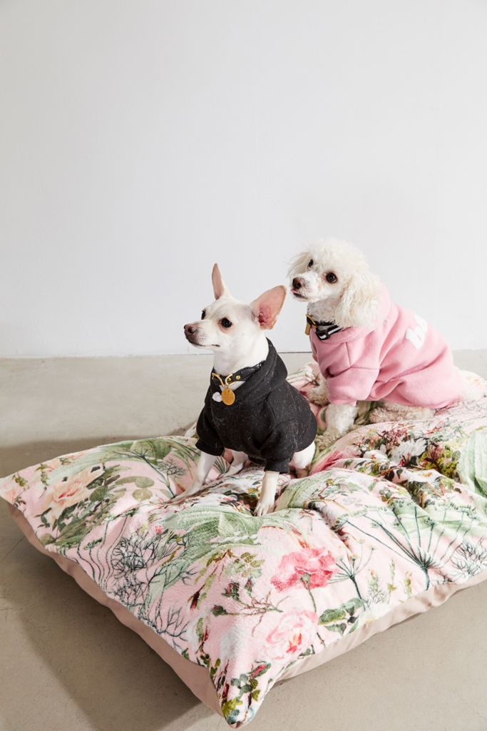 Dog bed pillow from Urban Outfitters.