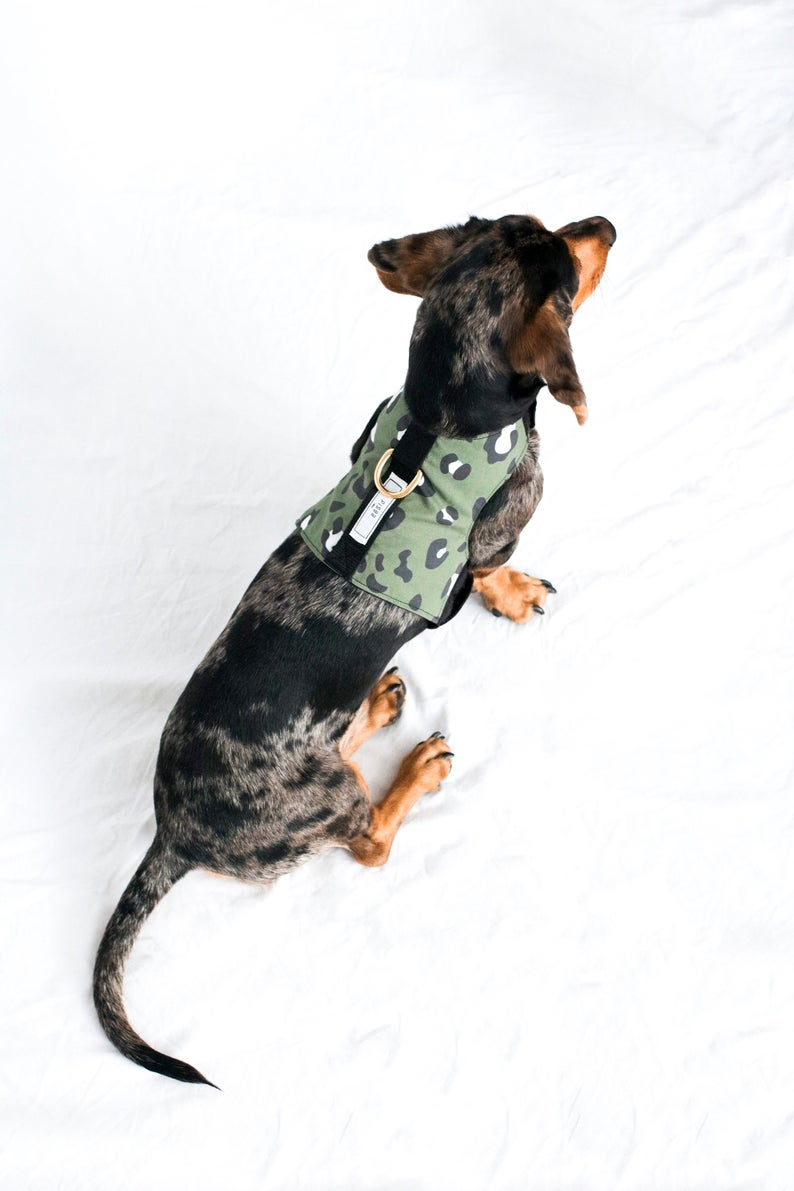 ROUND-UP: Luxury Leopard Print Dog Collars, Harnesses and Accessories - feat. Pisba Dogs Green Leoprint Print Dog Harness (via Etsy)