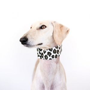 ROUND-UP: Luxury Leopard Print Dog Collars, Harnesses and Accessories - Image via Sighthound Squad