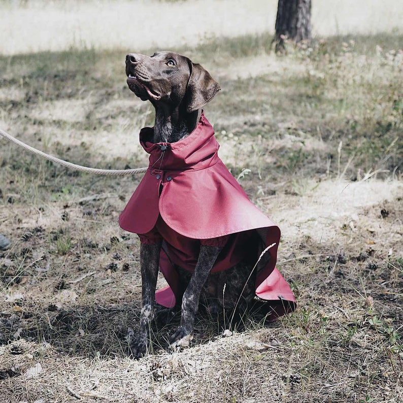 HuntingPony Waterproof Cloak Dog Raincoat with Hood via Etsy.