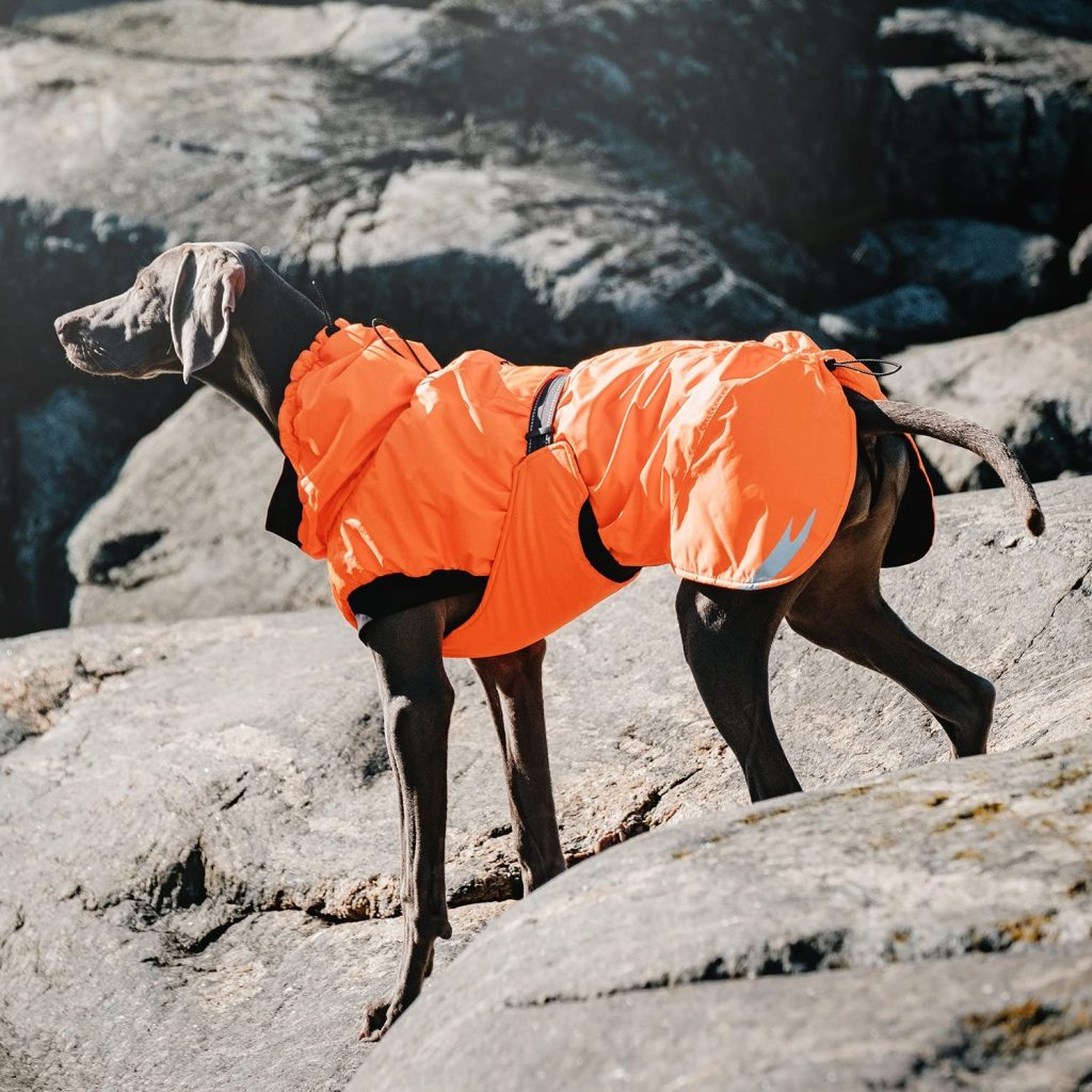 Hurtta Extreme Warmer Dog Winter Jacket in Orange via Amazon. Raincoats for large dogs.