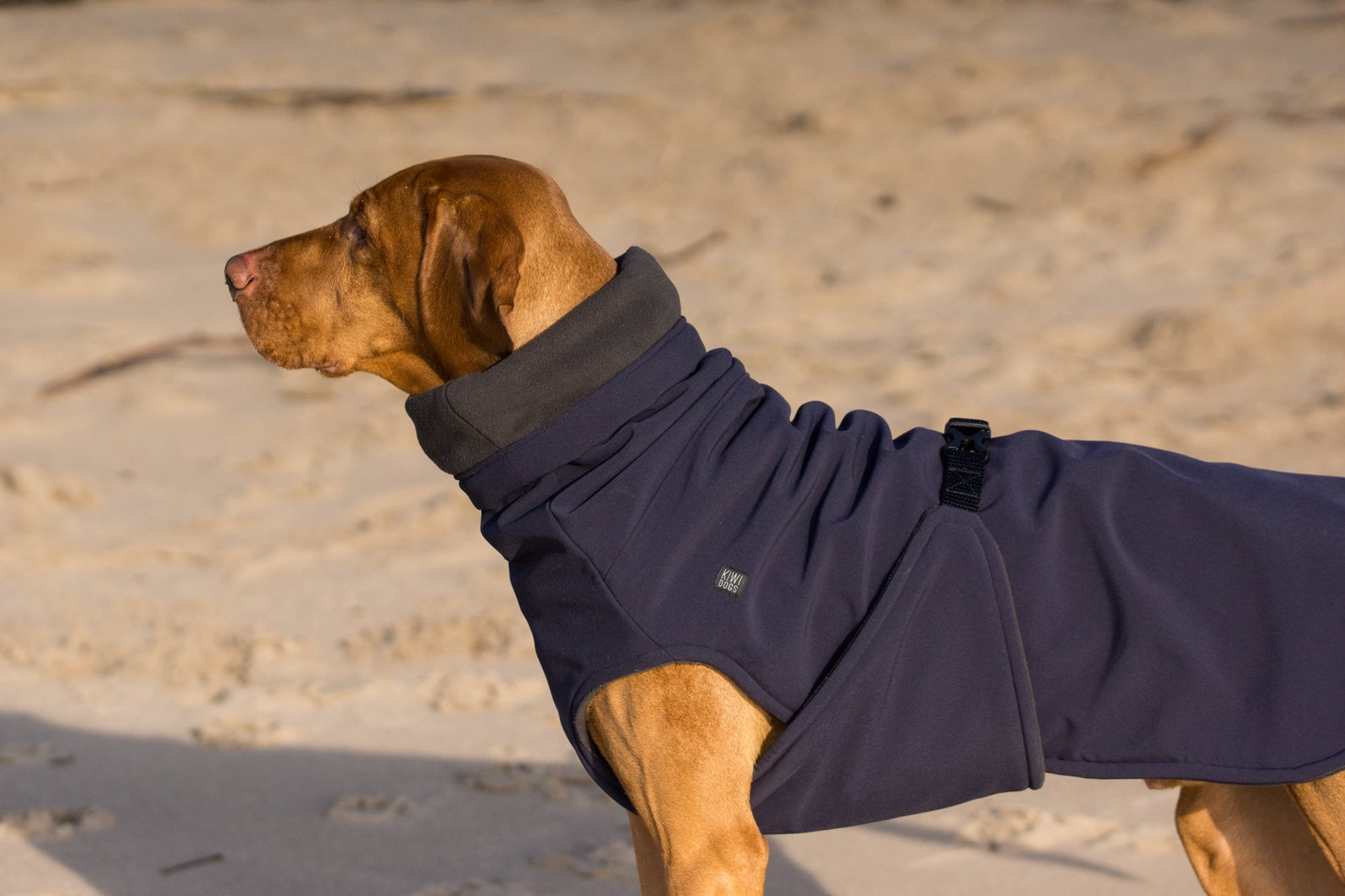 KiwiDogs Waterproof and Windproof Soft Shell Raincoat via Etsy.
