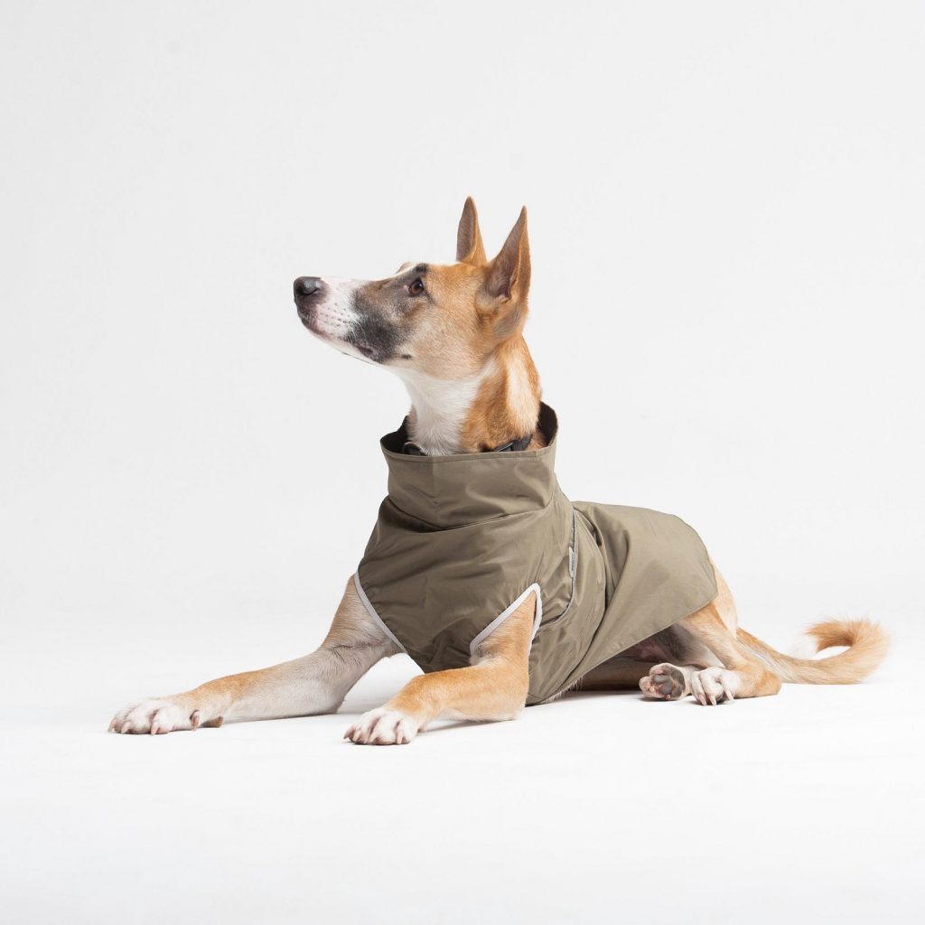 WoofitDogwear Light Rain Jacket for Dogs in Khaki via Etsy.