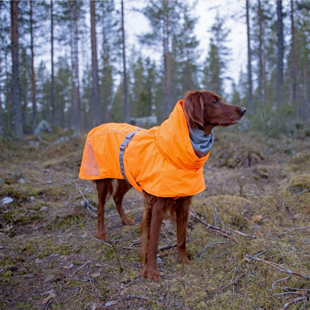 Hurtta Extreme Warmer Dog Winter Jacket in Orange via Amazon.