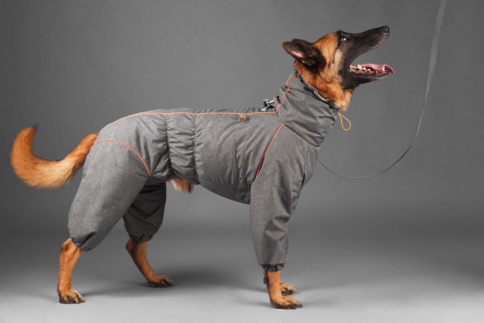 BarkAndGo Large Breed Reflective Waterproof Dog Raincoat Bodysuit via Etsy.