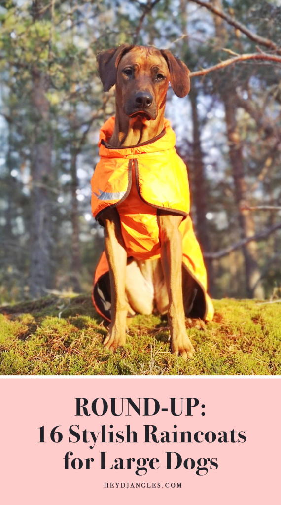 ROUND-UP: 16 Stylish Raincoats for Large Dogs - coats for big dogs, waterproof coats for large dog breeds.