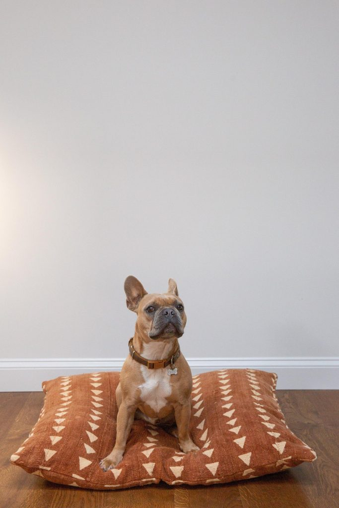 20+ Stylish Boho Dog Beds You and Your Fur Kids Will Love - feat. Rust Triangles Mudcloth Dog Bed - from Shop Cocody (via Etsy).
