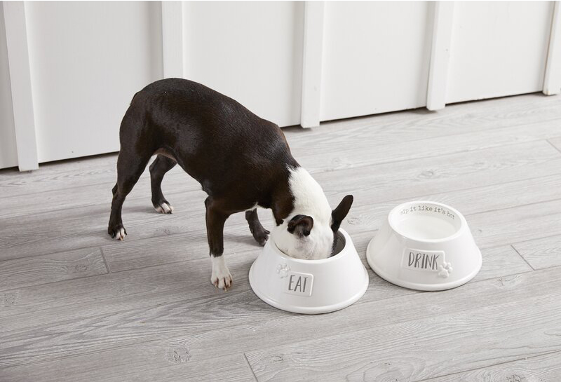 Mud Pie™ Stacked Dog Bowls available from Wayfair. Weighted dog bowls.