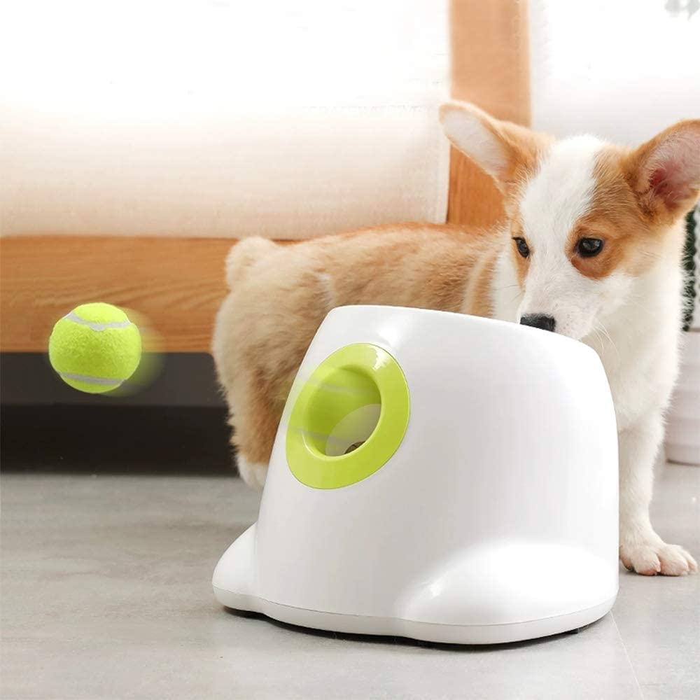 All for Paws Automatic Tennis Ball Launcher for Small to Medium dogs via Amazon.