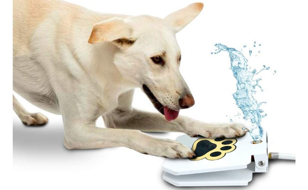 IMAGE: via Amazon, feat. Step-on Dog Drinking Water Fountain.