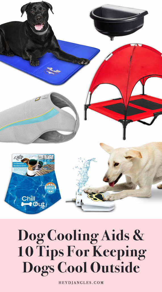 Dog cooling aids and tips for keeping dogs cool outside during Summer.