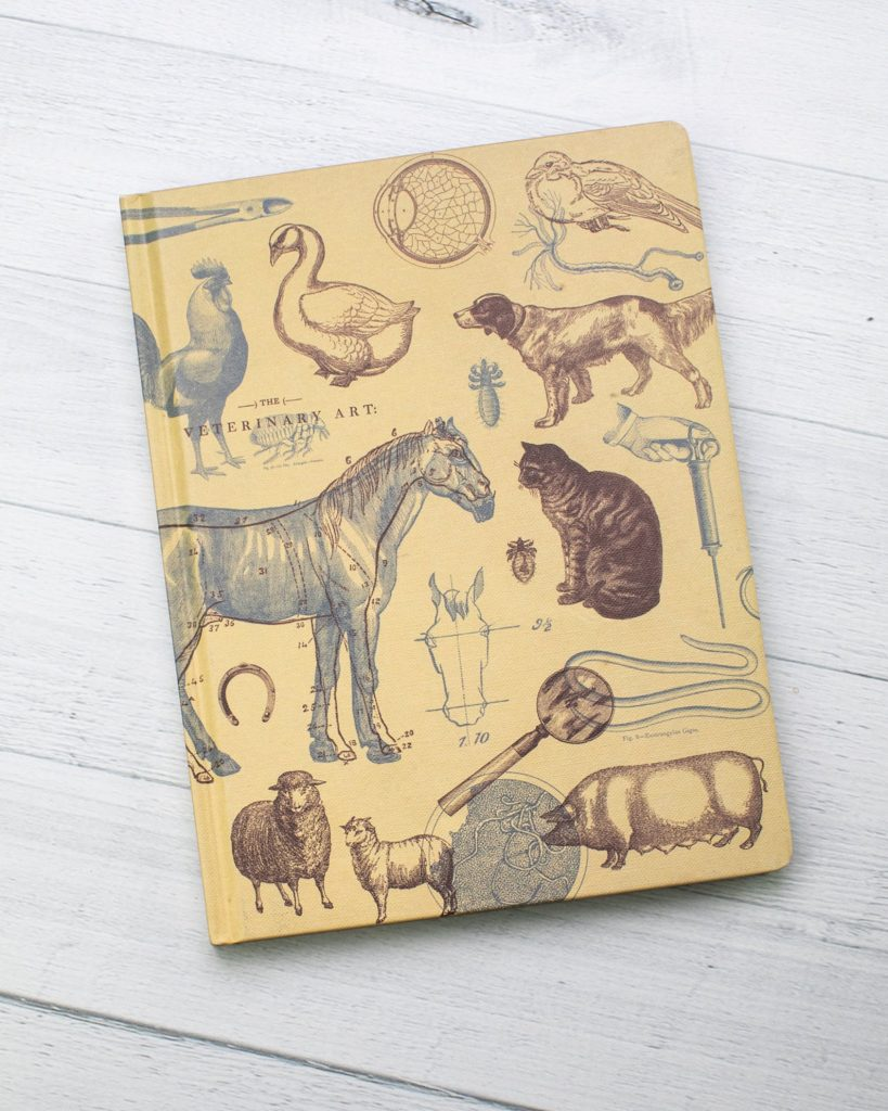 Vet Science notebook via Etsy.