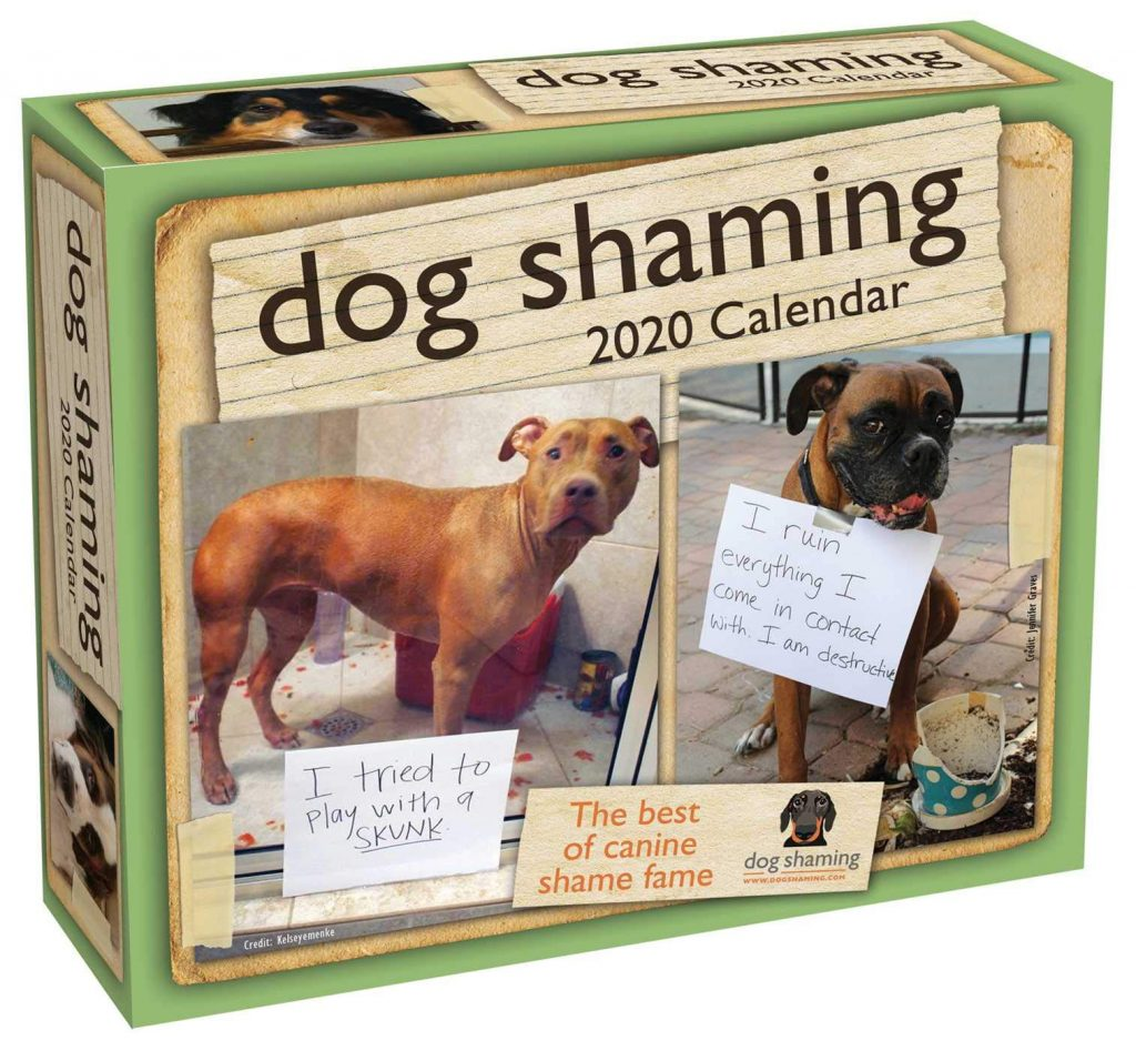 Dog Shaming desk calendar via Amazon.