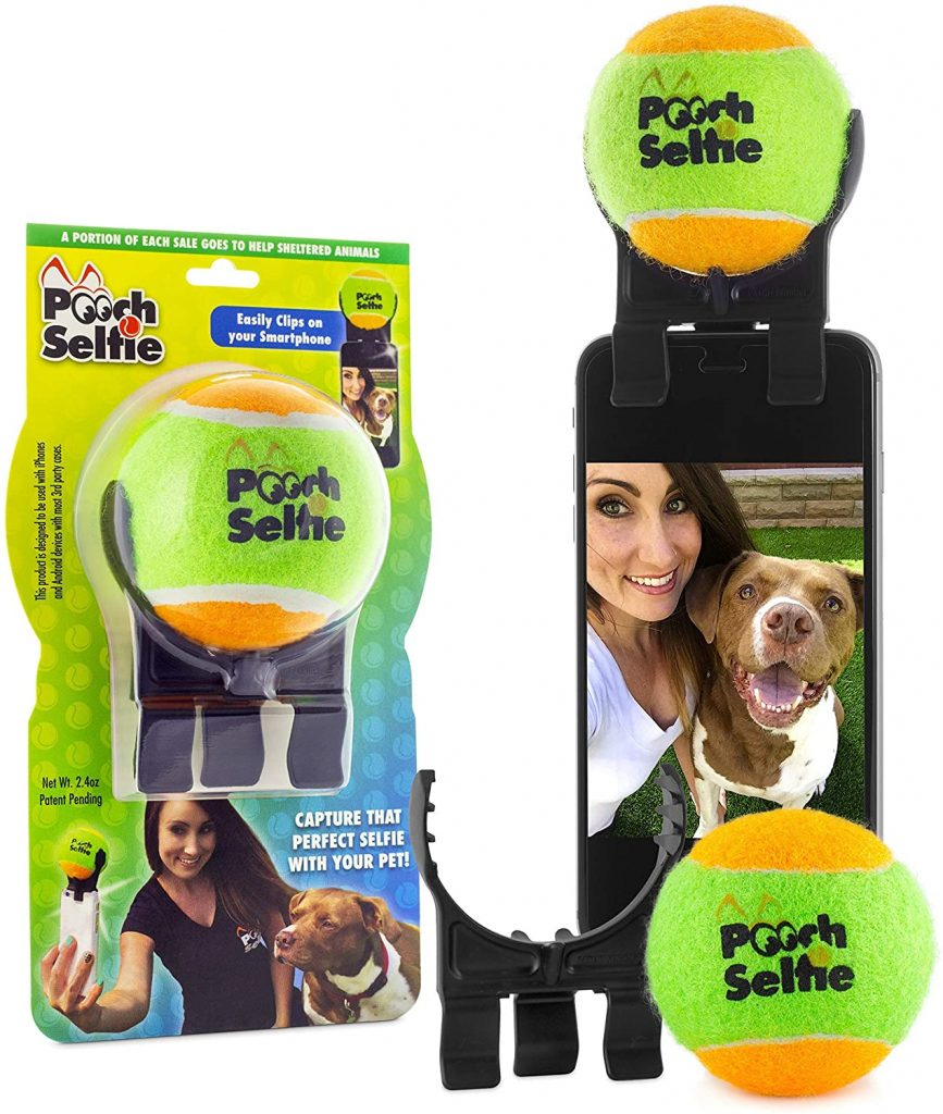 Pooch Selfie phone attachment via Amazon.