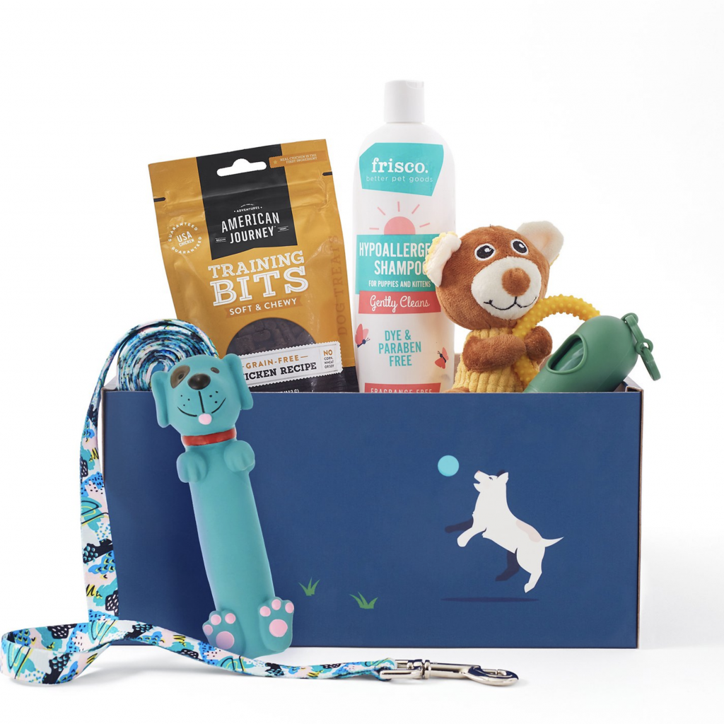 Chewy Goody Box for Puppies, puppy gift box ideas.