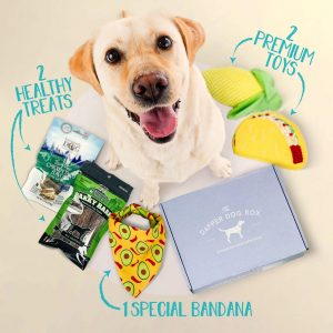 The Dapper Dog Box via Amazon - subscription box, doggy gift baskets.