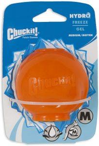 Chuckit! Hydro Freeze Ball via Amazon