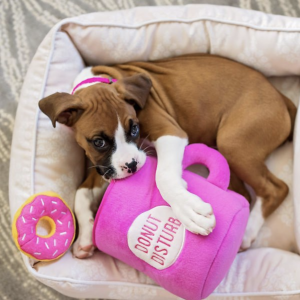 12 Best Hide and Seek Toys for Dogs - Feat. Coffee and Donutz Dog Toy from Chewy.
