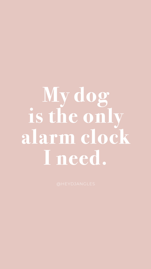 My dog is the only alarm clock I need, dog quotes, dog mom life, dog love.