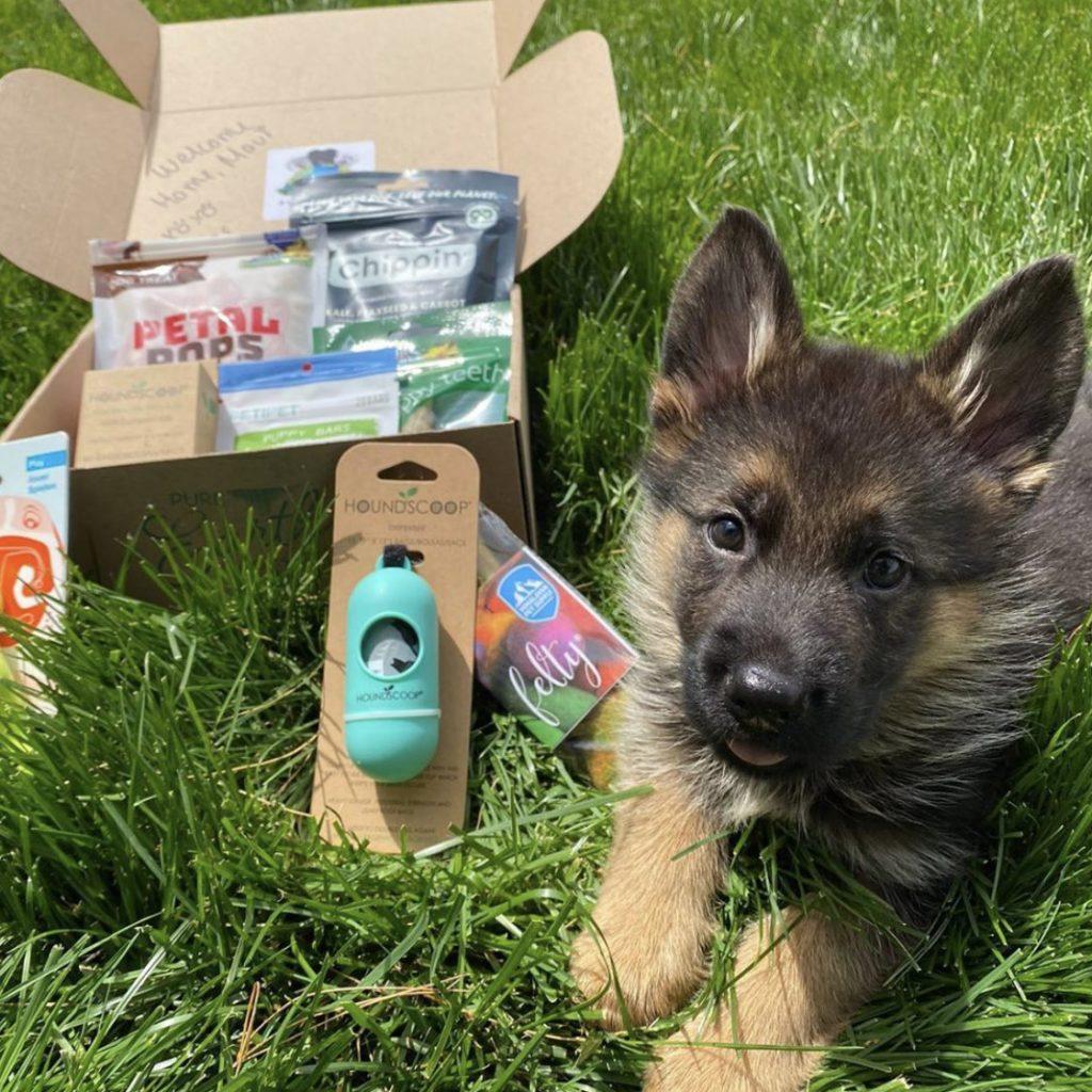 PURE EARTH PETS PUPPY BOX, puppy subscription box