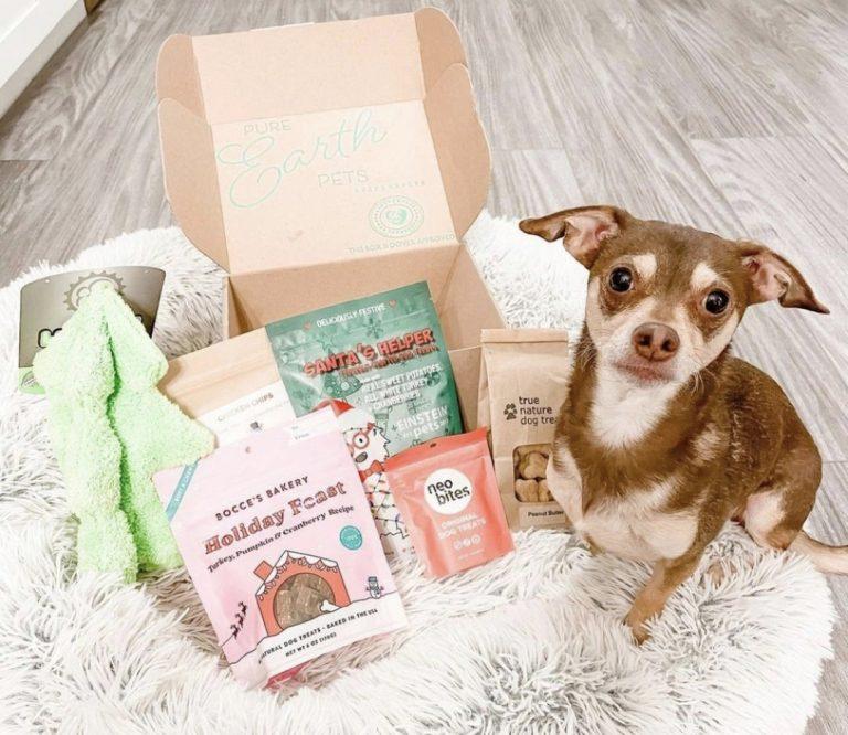PURE EARTH PETS ECO-FRIENDLY DOG BOX