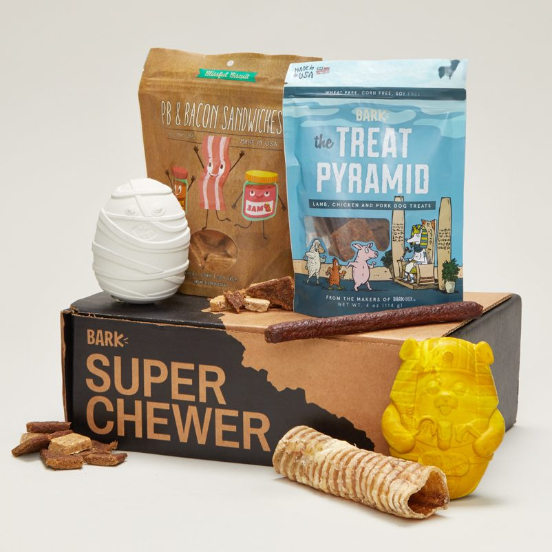 Super Chewer Subscription Dog Box from BarkBox.