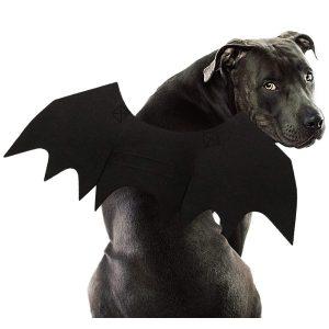 Rypet Bat Halloween Costume for Extra Large Dogs via Amazon