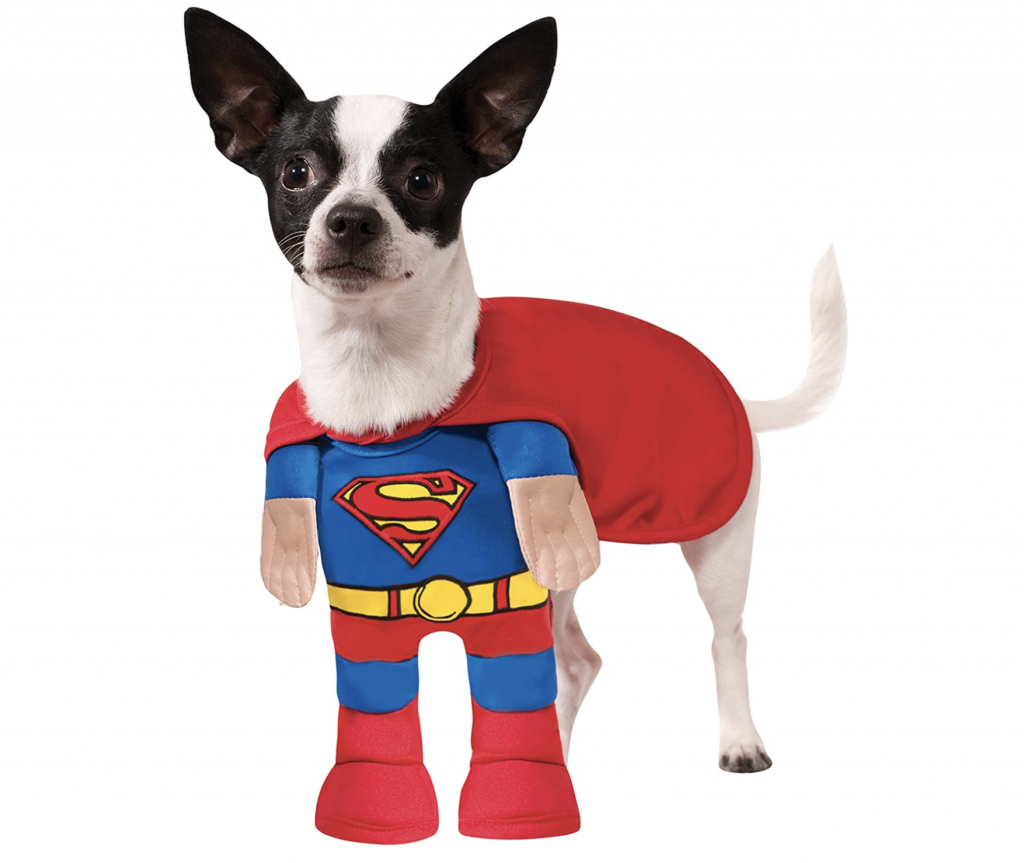 22 Super-Cute Halloween Costumes for Chihuahuas - Rubie's Costume Co. Superman Pet Costume via Amazon