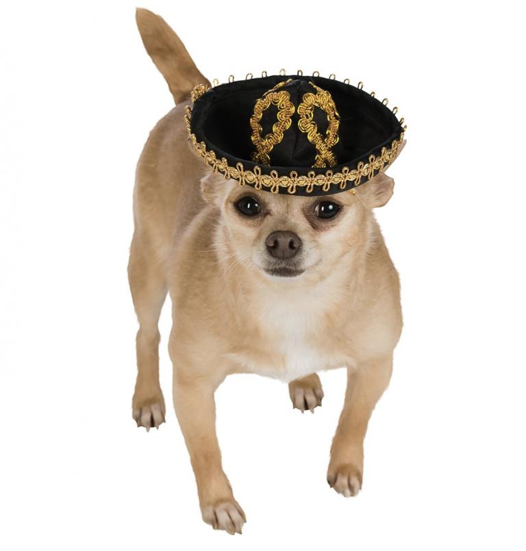 Rubie's Costume Co. Pet Sombrero via Amazon
