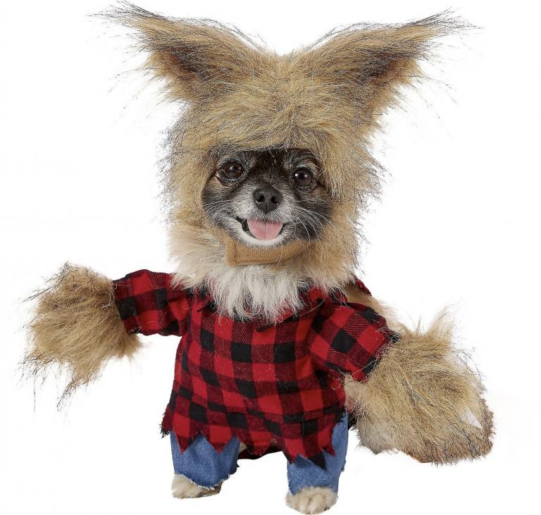 Frisco Werewolf Dog Costume via Chewy