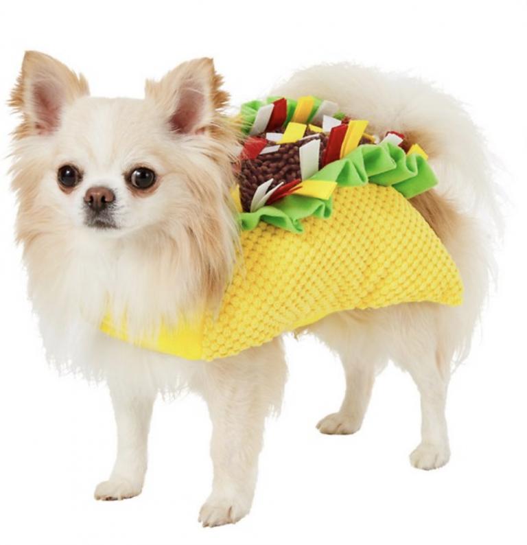 Frisco Taco Dog Costume via Chewy