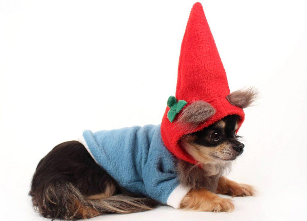 Gnome Fleece Dog Halloween Costume via Etsy (Petit Dog Apparel)